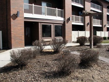 911 E Belmont St 1-2 Beds Apartment for Rent Photo Gallery 1