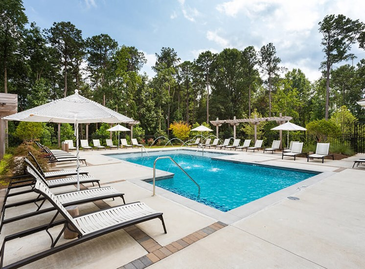 Gorgeous Modern Pool with Sunshelf and Lounge Chairs for Relaxing at Echo at North Pointe Center Apartment Homes, Alpharetta, GA 30009