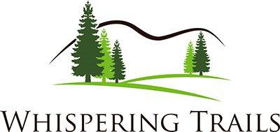 Naperville Property Logo 5