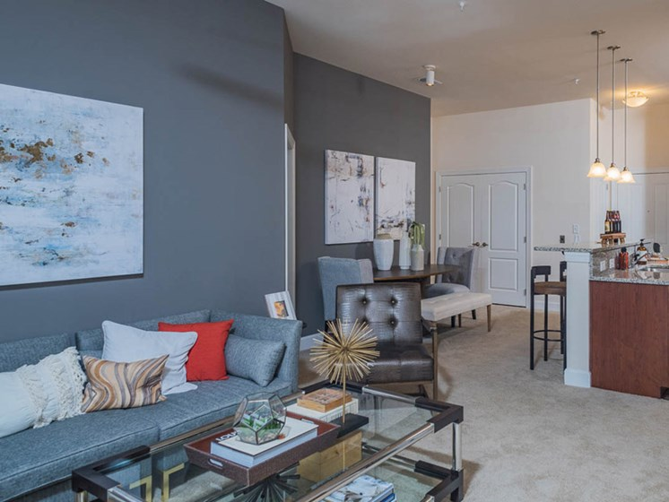 9 Foot Ceilings at Abberly CenterPointe Apartment Homes, Virginia