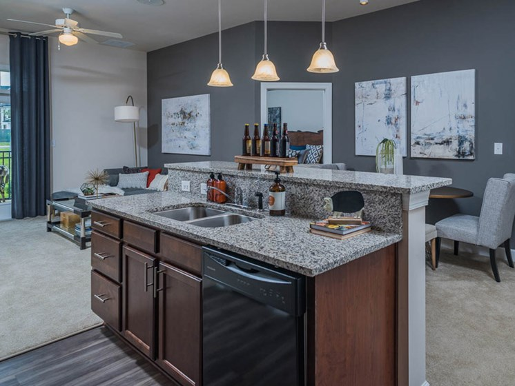 Granite Countertops at Abberly CenterPointe Apartment Homes, Midlothian, 23114