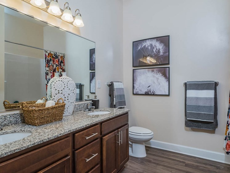 Upgraded Bathroom Fixtures at Abberly CenterPointe Apartment Homes, Midlothian