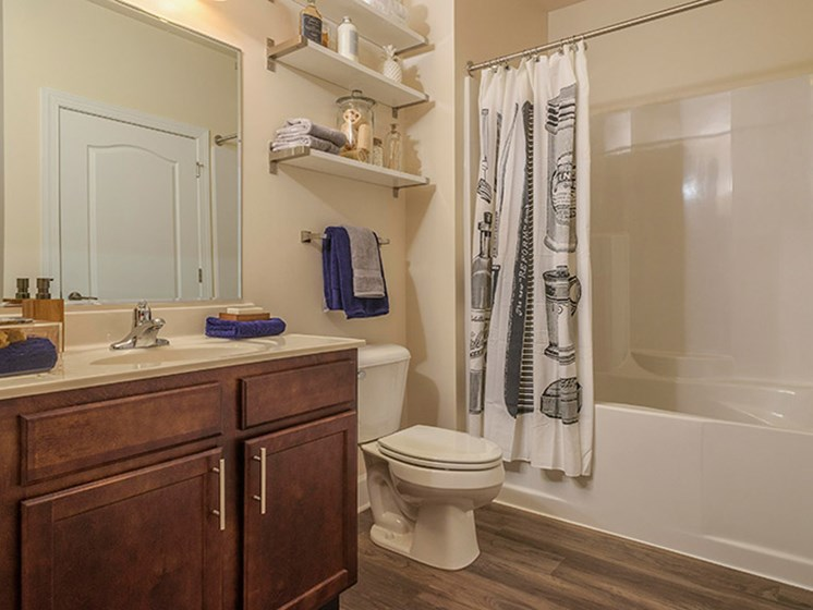 Wood Plank Style Flooring in Baths at Abberly CenterPointe Apartment Homes, Midlothian, 23114