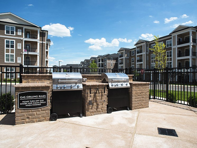 Outdoor Grilling Area at Abberly CenterPointe Apartment Homes, Midlothian, 23114