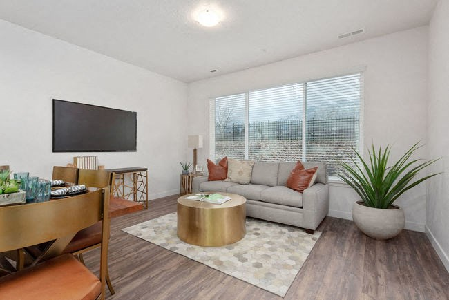 Living Room in model unit