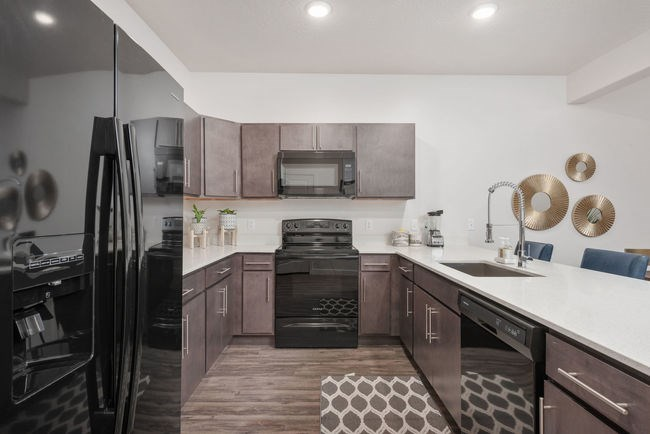 Kitchen in model unit