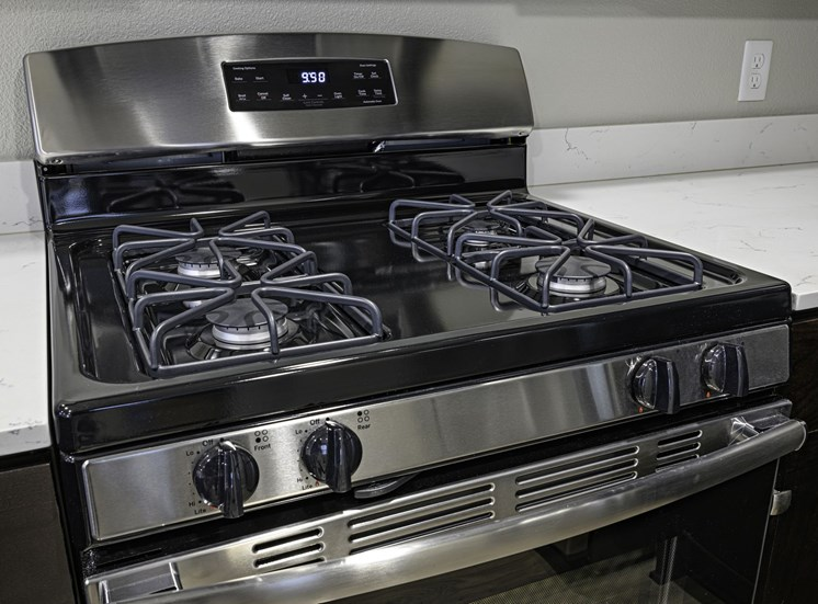 Stainless Gas Stove