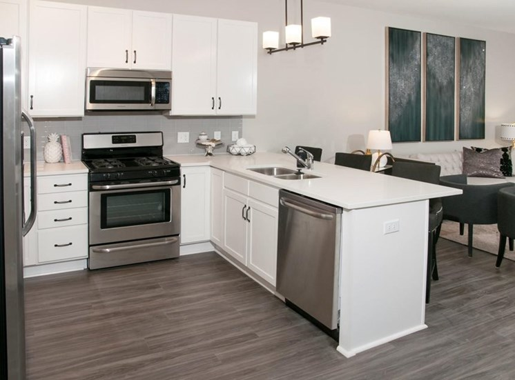 All Electric Kitchen Residences at 1700 Model Kitchen