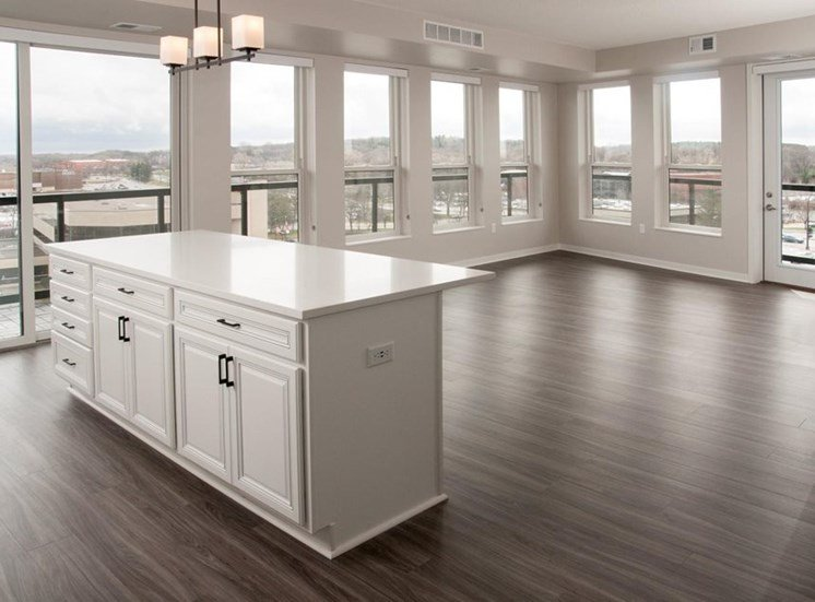 Wood Inspired Plank Flooring Residences at 1700 Vacant Kitchen Living Room