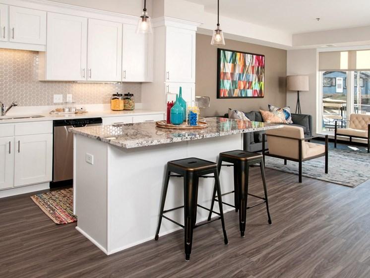 Decorated Apartment Living Room at The Shoreham, Minnesota