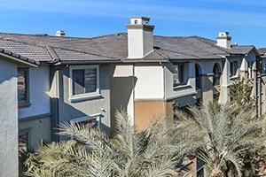 7545 Oso Blanca Rd 1-2 Beds Apartment for Rent Photo Gallery 1