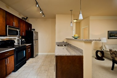 255 Patroon Creek Blvd. 1 Bed Apartment for Rent Photo Gallery 1