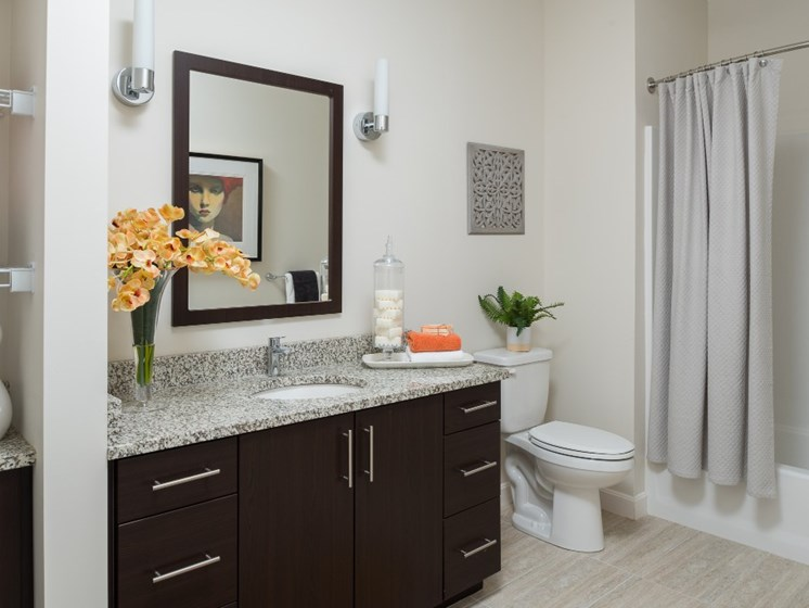 Bathroom with Faux Granite Counter tops at East Main apartments, Norton, 02766