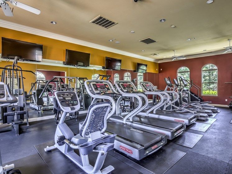 24 Hour Fitness Center - cardio machines, weighted machines