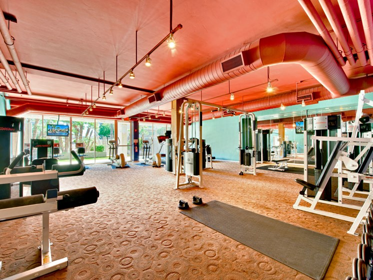 Arcadia Luxury Apartments - Capri on Camelback Fitness Center With Free Weights and Weighted Machines