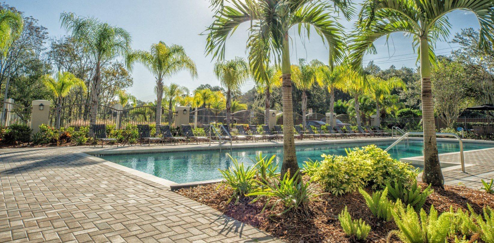 Beautiful Pool at The Preserve at Westchase, Tampa, Florida