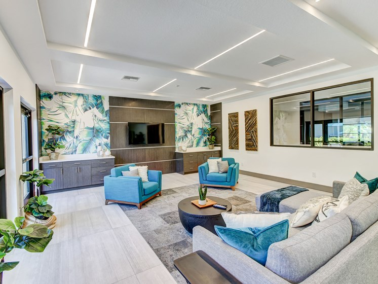 Clubhouse TV The Preserve at Westchase, Tampa, FL, 33626