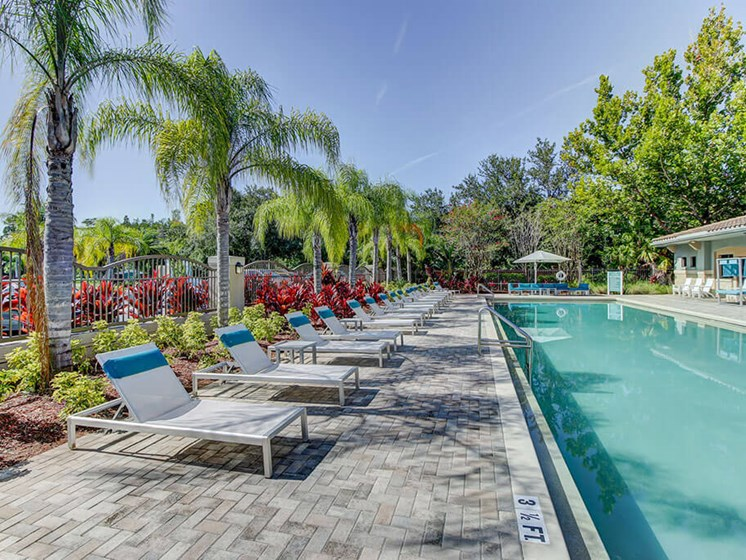 Relaxing Swimming Pool at The Preserve at Westchase, Florida, 33626
