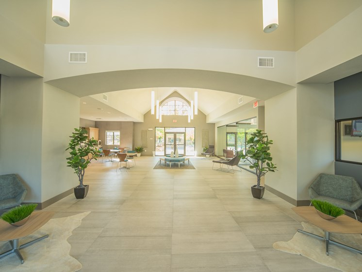 Stylish Clubhouse at The Preserve at Westchase, Tampa, Florida