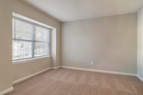 Living Room with Wall to Wall Carpet