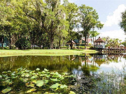 Lake | Landmark at Grayson Park Apartment Homes | Tampa, FL