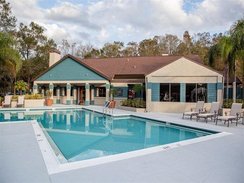 Swimming Pool | Landmark at Grayson Park Apartment Homes | Tampa, FL