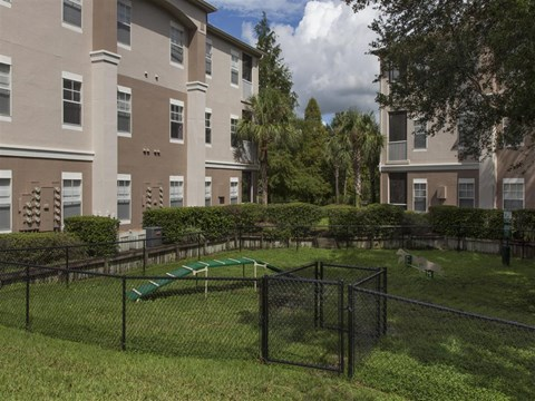 The Legends at Champions Gate | Apartments for Rent in Champions Gate, FL | Dog Park