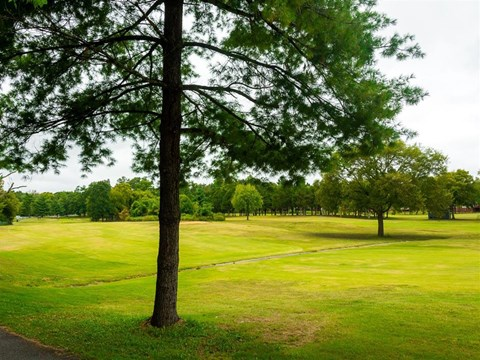 Nashboro Village   Apartments for Rent in Nashville, TN   Views of the Golf Course