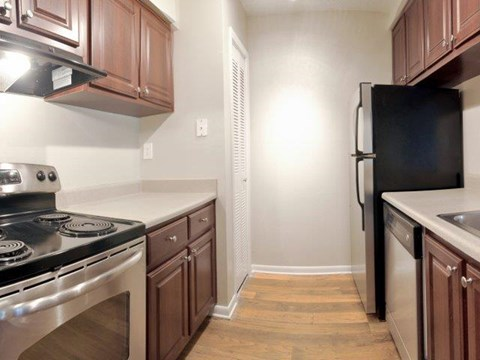 South Pointe | Apartments For Rent in Tampa, FL | Premium Kitchen