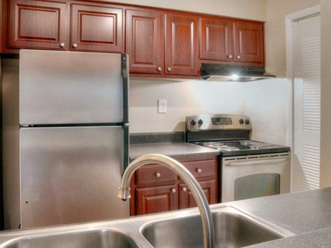 South Pointe | Tampa, FL Apartments for Rent | Kitchen Appliances and Counter