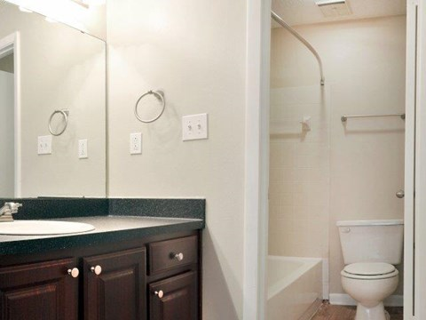 South Pointe | Apartments For Rent in Tampa, FL | Bathroom