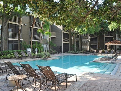 South Pointe | Apartments For Rent in Tampa, FL | Swimming Pool with Sundeck