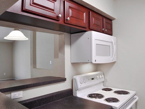 South Pointe | Apartments for Rent in Tampa, FL | Updated Kitchen Appliances