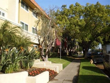 8655 Belford Ave. 1-3 Beds Apartment for Rent Photo Gallery 1