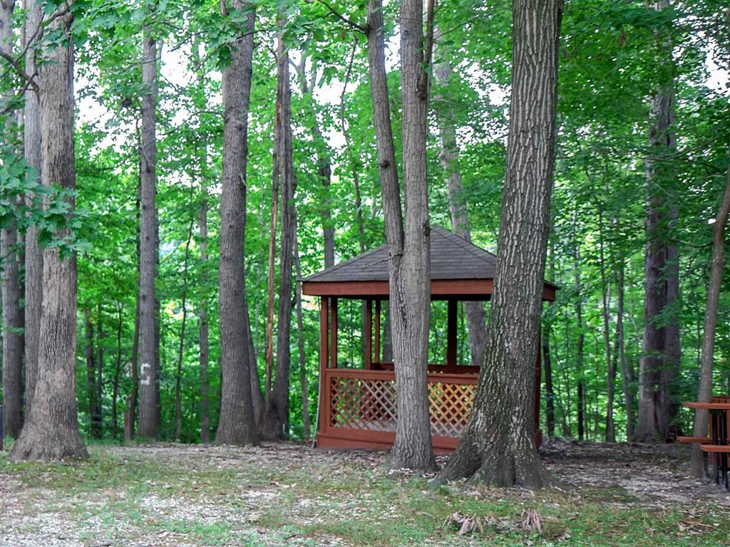 Picnic Area| Aston Woods | Apartments in Silver Spring, Maryland