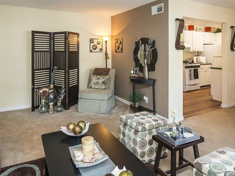 Open Living Room | Grand Arbor Reserve Apartment Homes Raleigh, NC