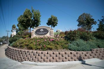 9705 Carlton Hills Blvd 1-2 Beds Apartment for Rent Photo Gallery 1