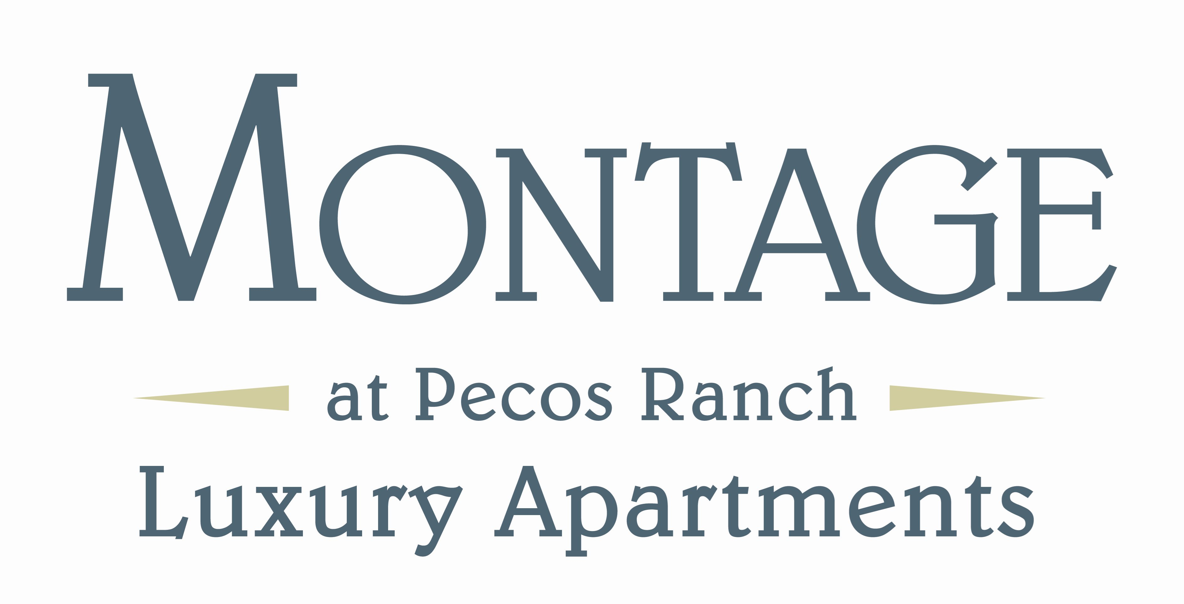 Chandler Property Logo 3