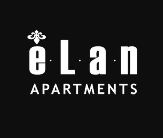 Dallas Property Logo 1