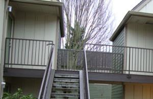 Portland homepagegallery 2