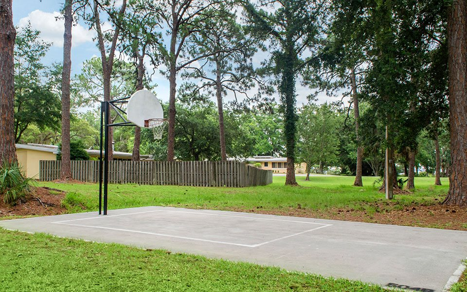 osprey lane basketball court