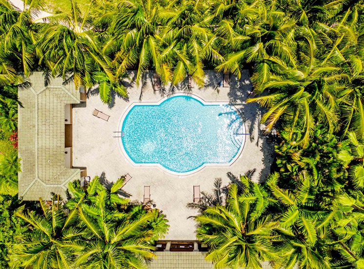 Vizcaya Lakes at Renaissance Commons Apartments has three separate resort-style swimming pools.