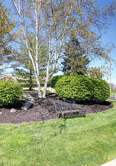 Landscaped Grounds with Lush Greenery, at Springburne at Polaris Apartments in Columbus, Ohio 43235