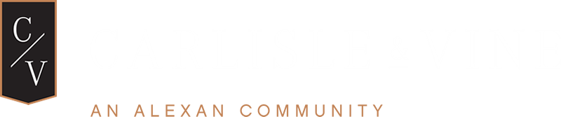 Dallas Property Logo 4