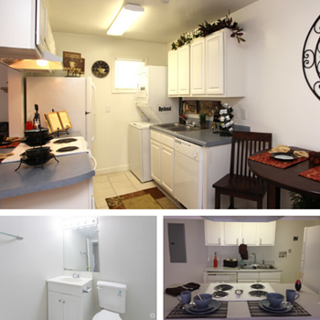 730 Anson St 1-3 Beds Apartment for Rent Photo Gallery 1