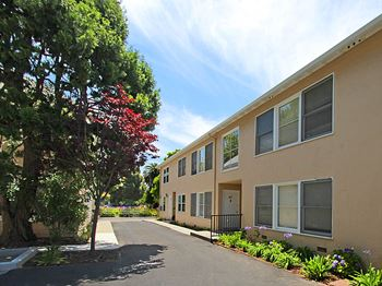 457 Forest Ave 1 Bed Apartment for Rent Photo Gallery 1