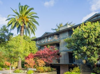 220 Palo Alto Avenue 1-2 Beds Apartment for Rent Photo Gallery 1