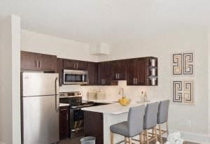 3701 Massachusetts Ave NW Studio-2 Beds Apartment for Rent Photo Gallery 1