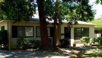 980 College Avenue 1 Bed Apartment for Rent Photo Gallery 1