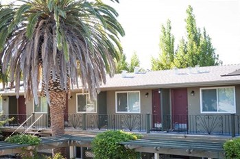 3390 El Camino Real Studio Apartment for Rent Photo Gallery 1